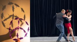 Photos of origami shapes and two tango dancers.